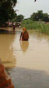 A woman wades through knee deep water in Naya Tola Bishambharpur Image by: Aparna Unni