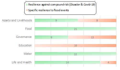 Figure 1: Attribution of flood resilience to health component. Some dimensions show a similar pattern in building both flood and health resilience. Other flood-related efforts are too specific and cannot be attributed to resilience against COVID-19.