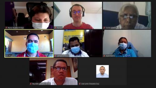 Plan International colleagues during virtual visit.